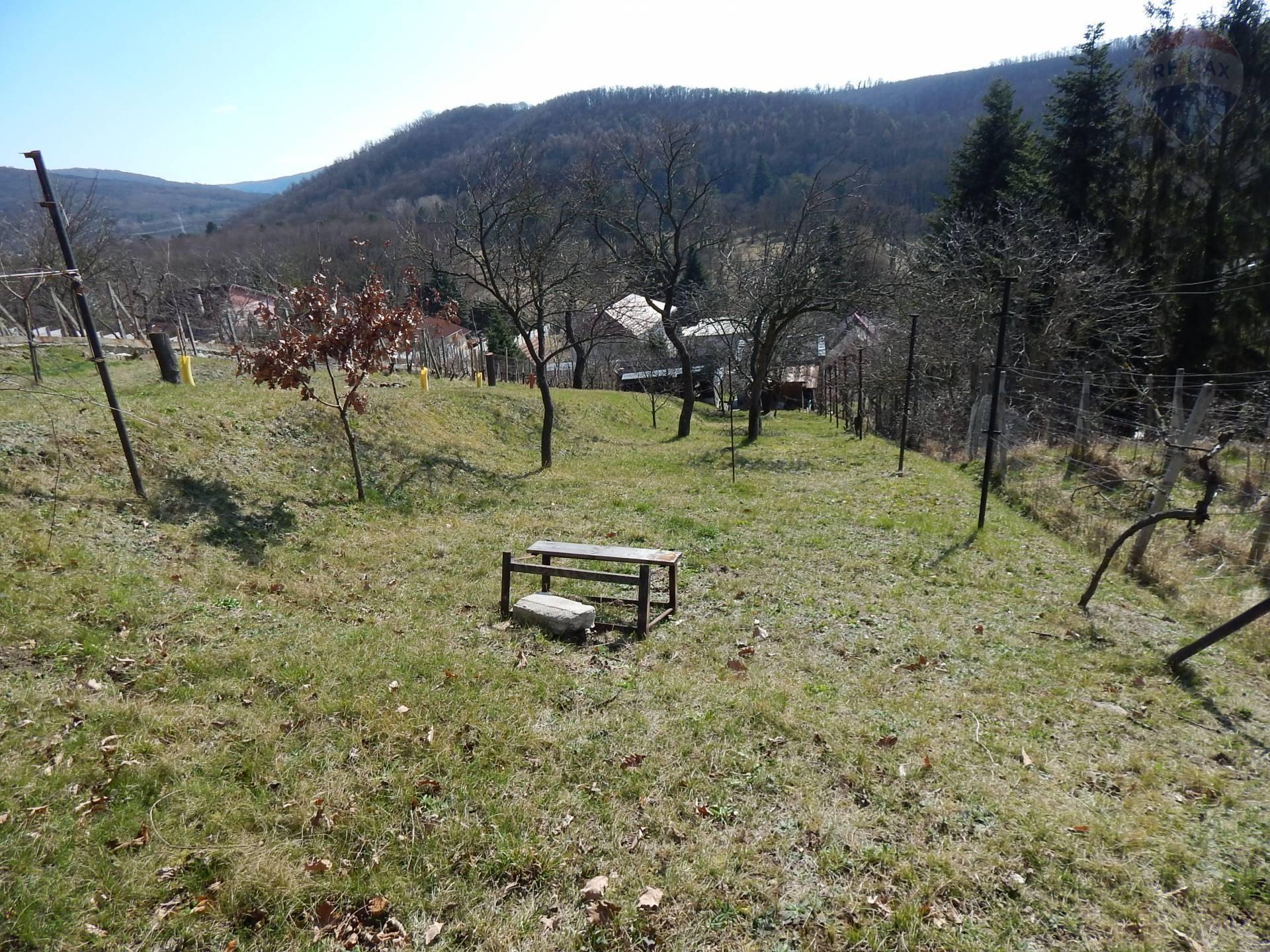 PREDAJ: Rodinný dom nad Stupavským parkom v krásnom prostredí