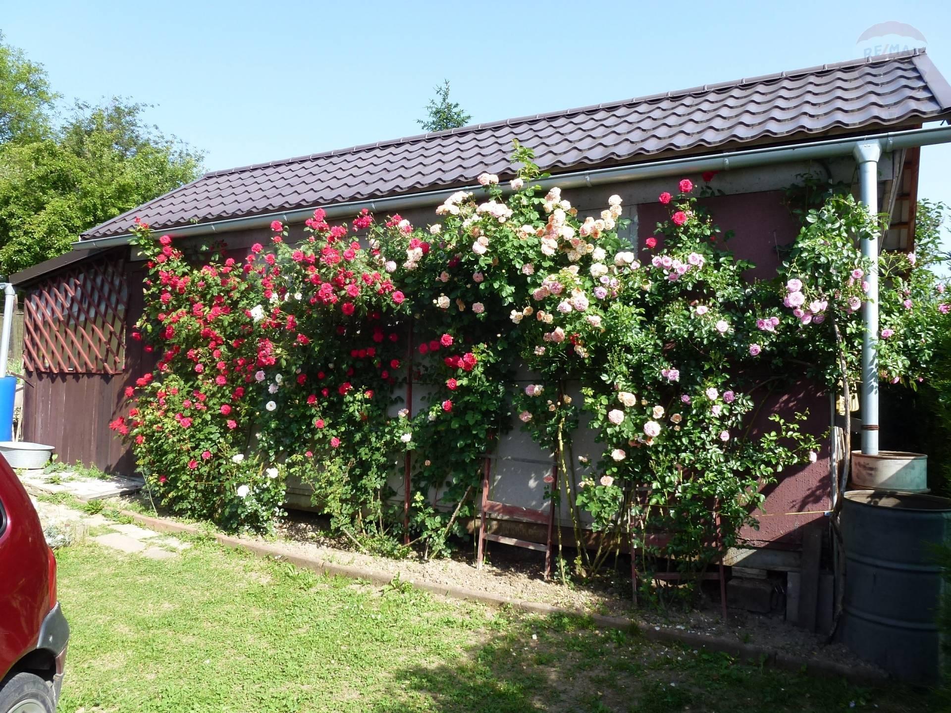 Na predaj záhrada 447 m2  s chatkou Vrútky.