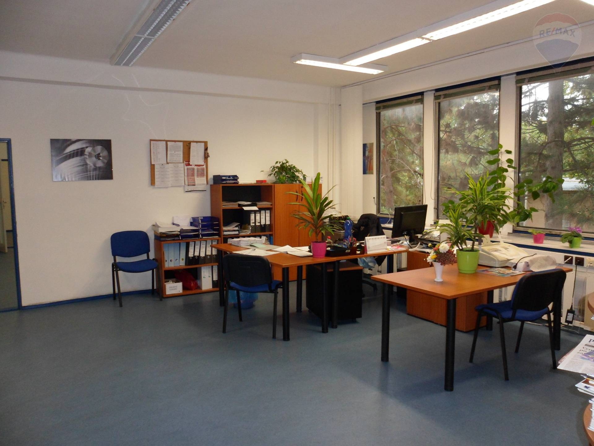 Prenájom komerčného priestoru 18 m2, Nitra - prenájom kancelárie Nitra