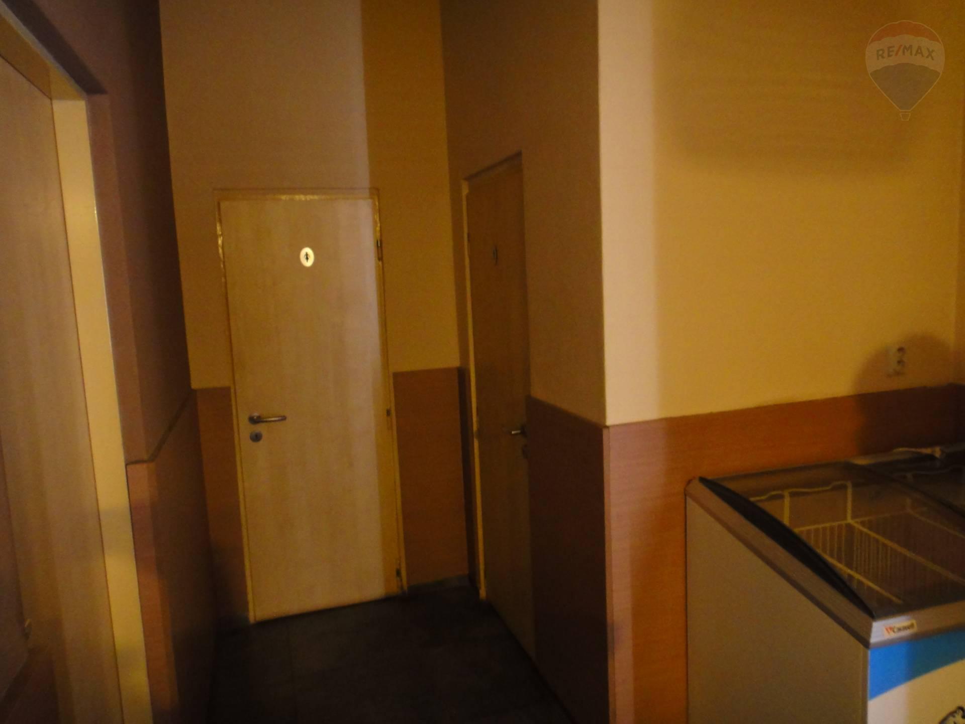 Predaj komerčného priestoru 754 m2, Horný Pial - vstup na WC