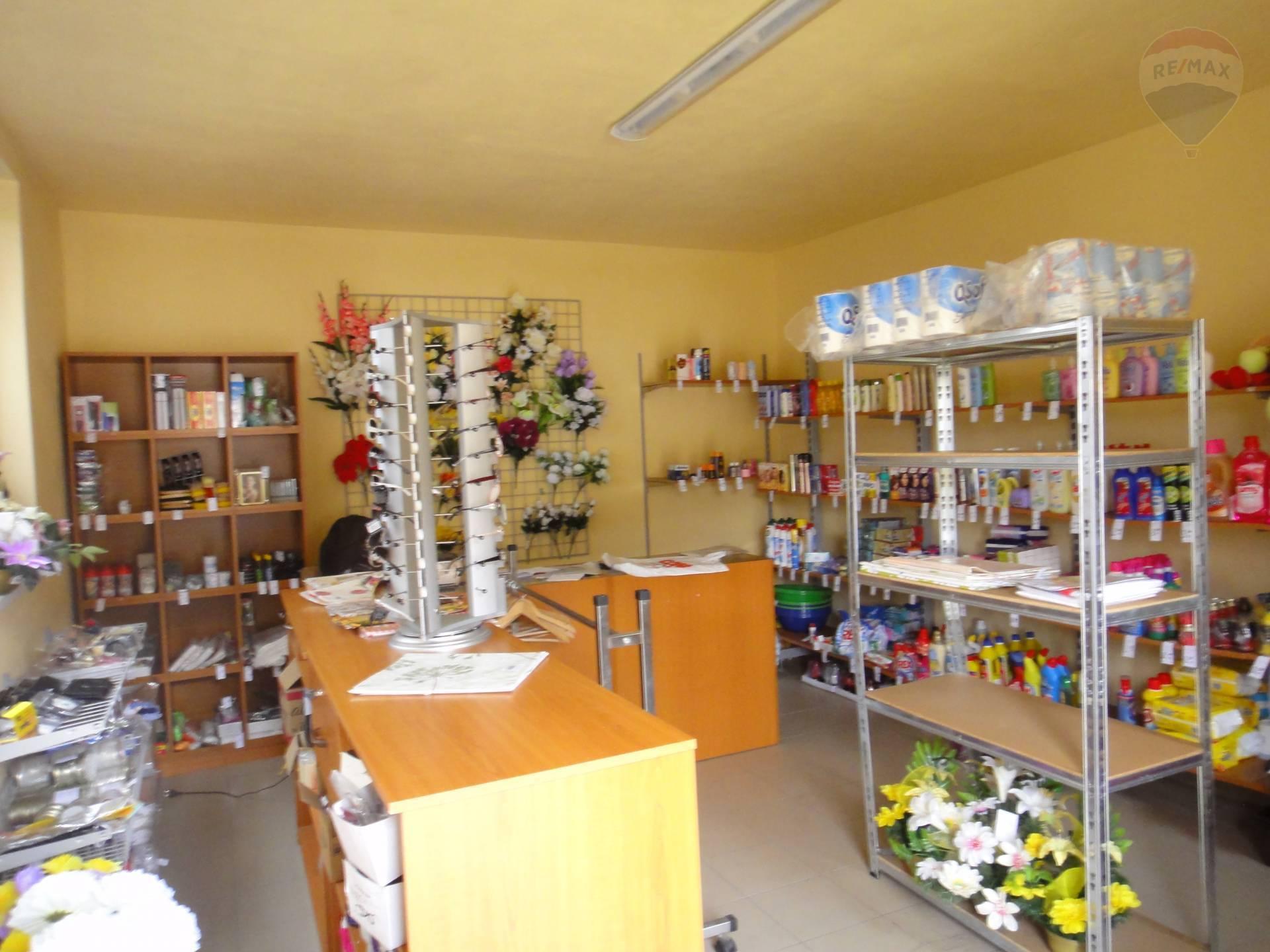Predaj komerčného priestoru 754 m2, Horný Pial - predajňa rozličného tovaru