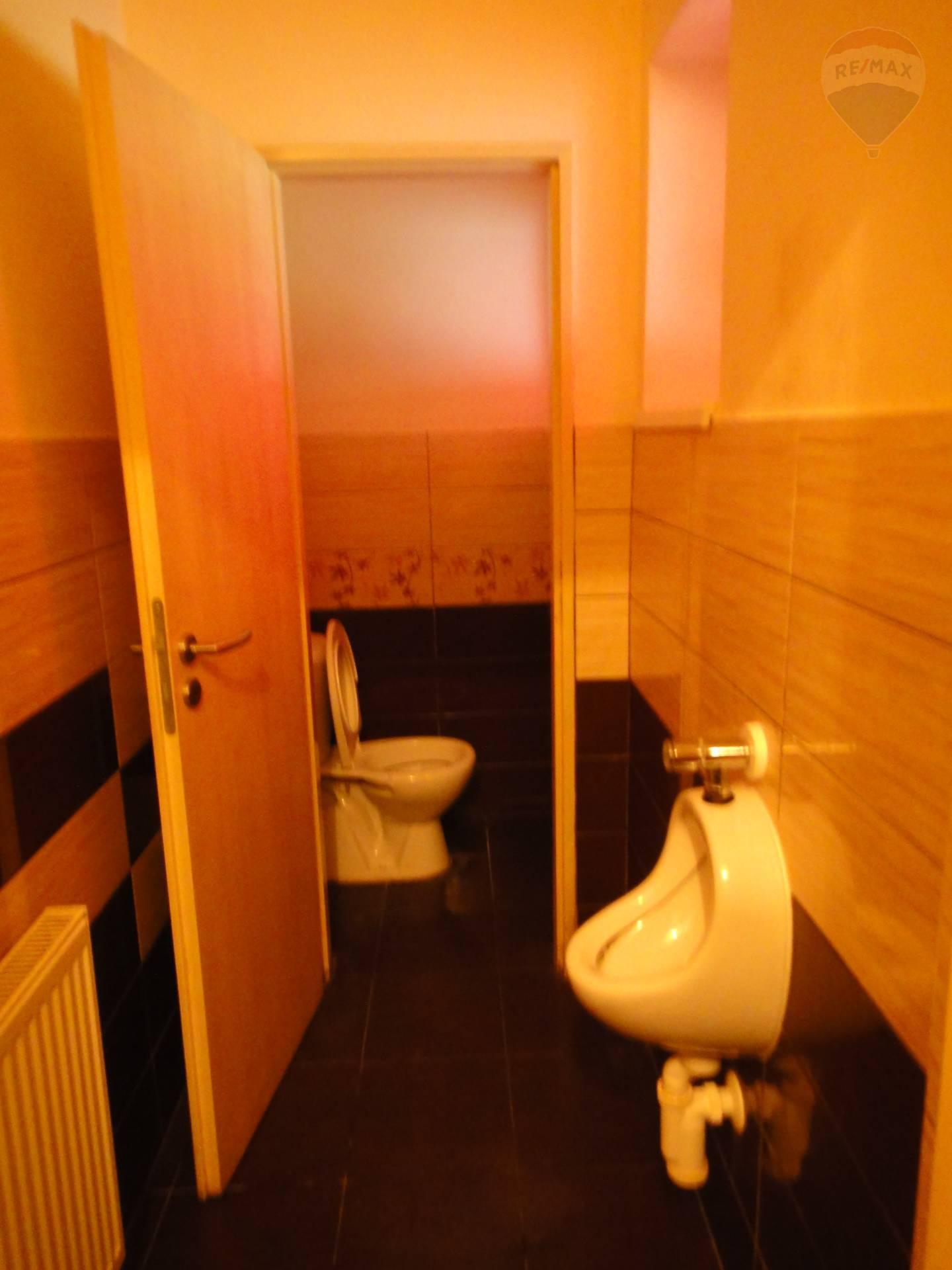 Predaj komerčného priestoru 754 m2, Horný Pial - WC páni