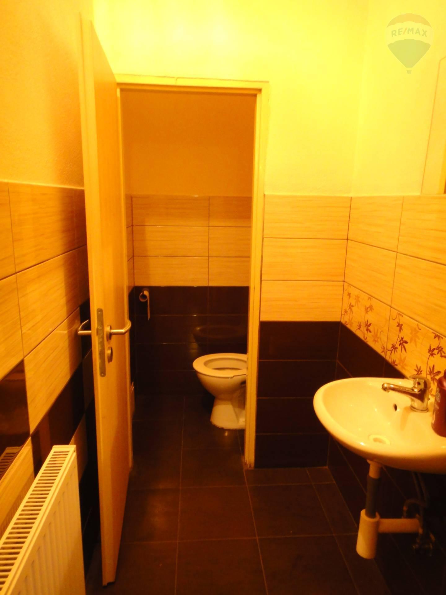 Predaj komerčného priestoru 754 m2, Horný Pial - WC dámy