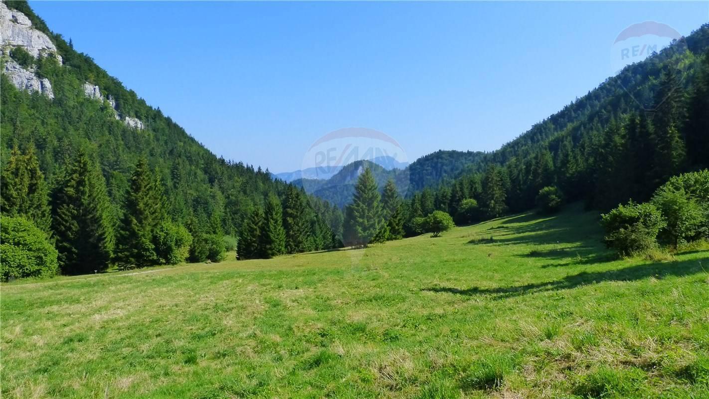 PREDAJ: pozemok pri lyžiarskom stredisku Malinô Brdo, Ružomberok