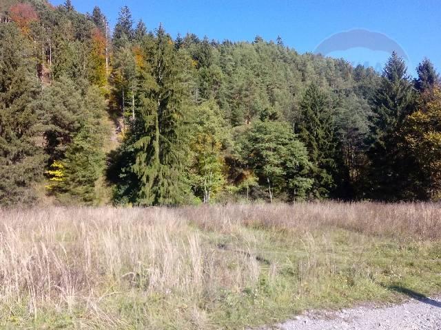 Predaj stavebného pozemku pri Martine - Bystrička