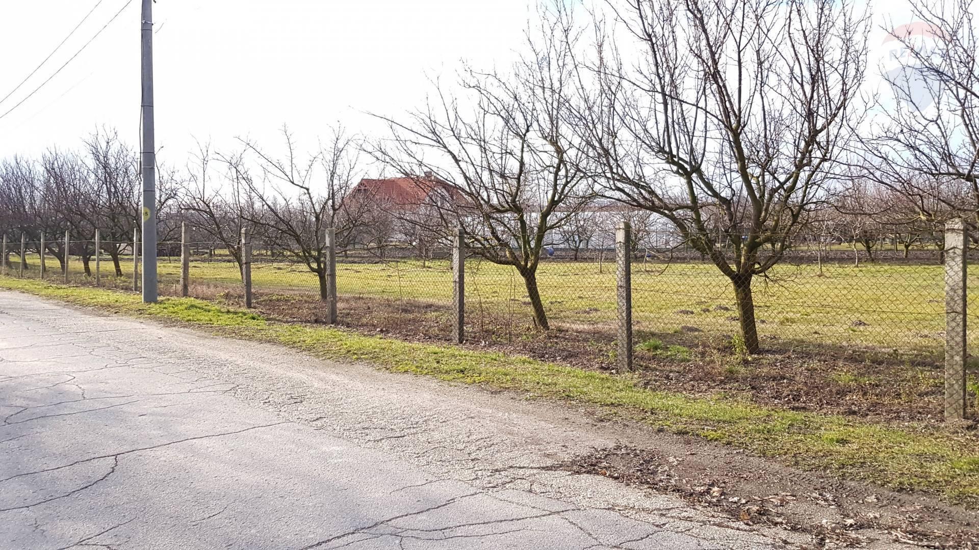 Na predaj stavebný pozemok, výmera  3 909 m2, Veľký Meder
