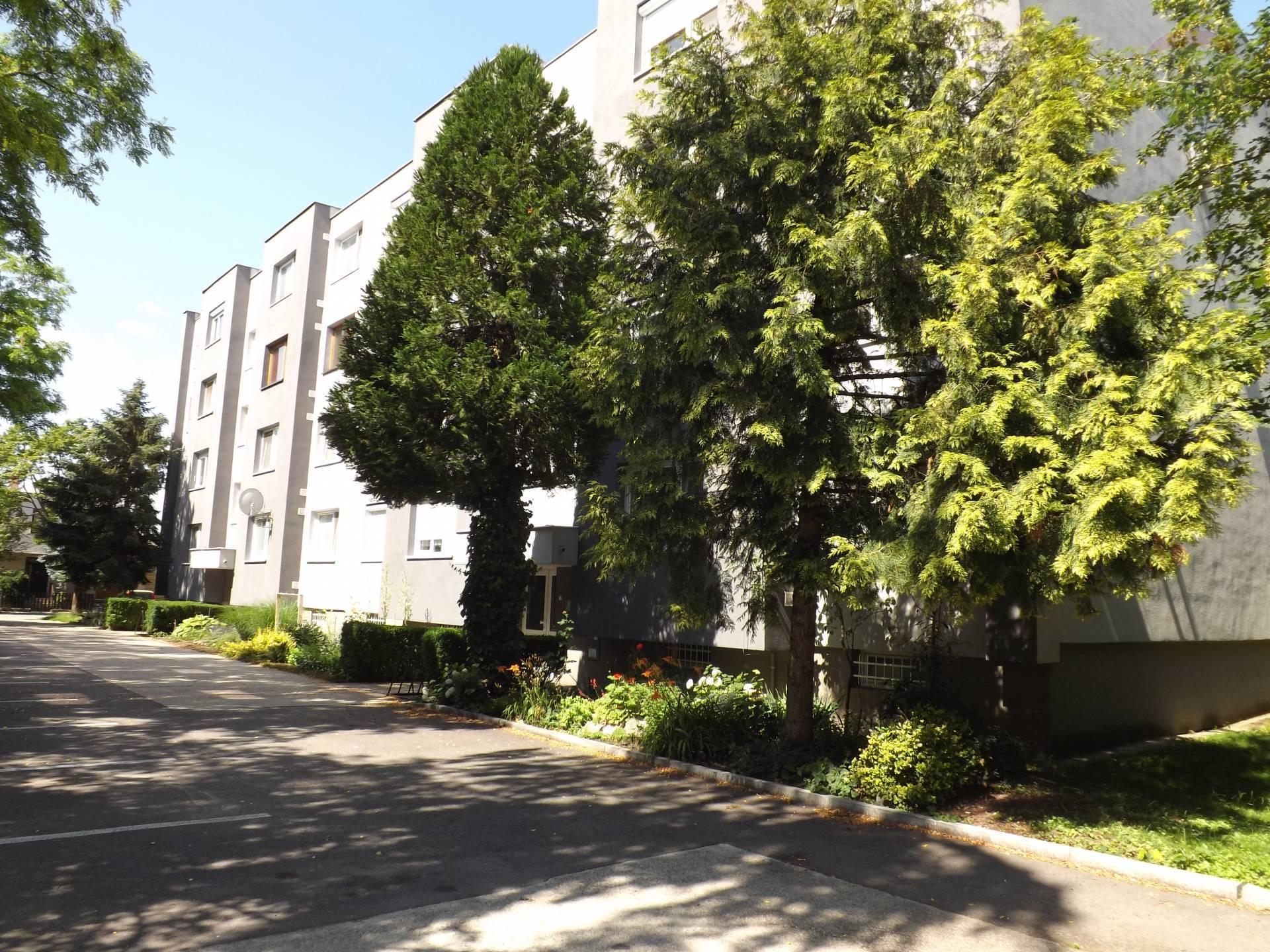 Na prenájom 1 izbový byt, 38 m2, Dunajská Streda_Západ