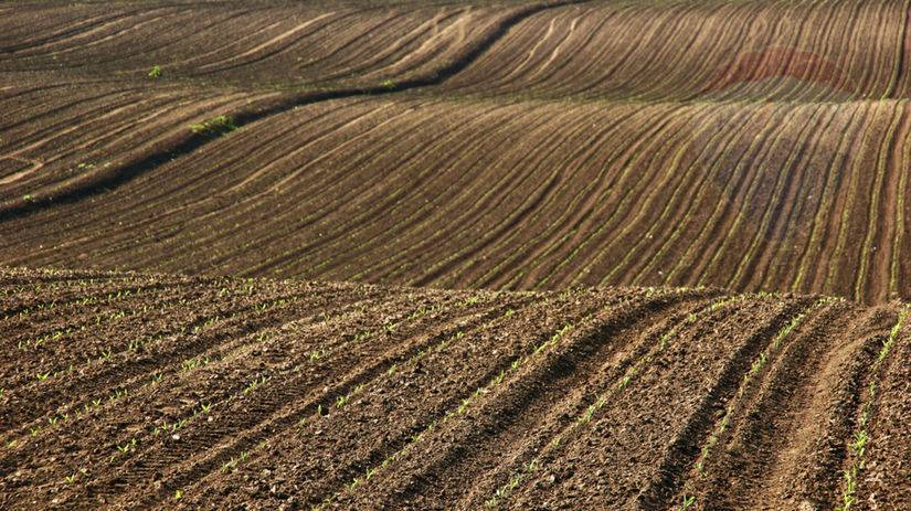 PREDAJ - Pozemky 4,7 ha - Čereňany