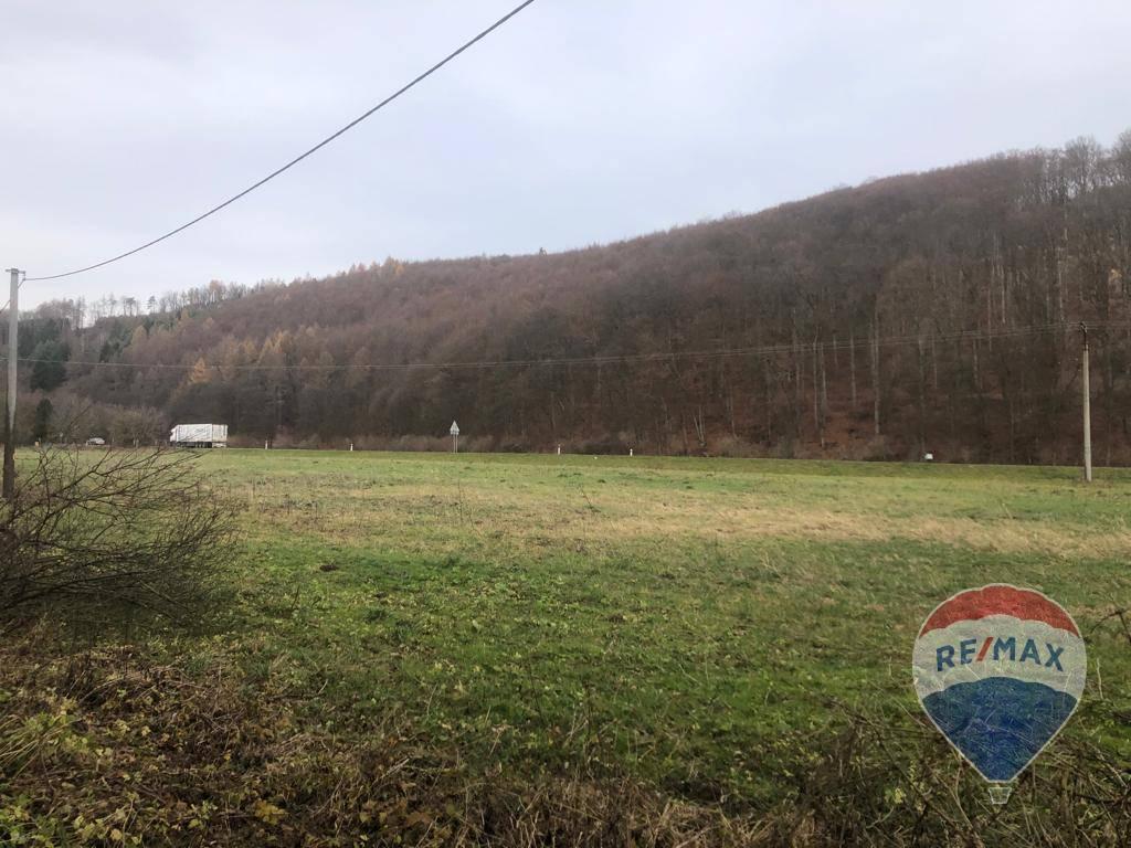Predaj pozemku 10001 m2, Drietoma -