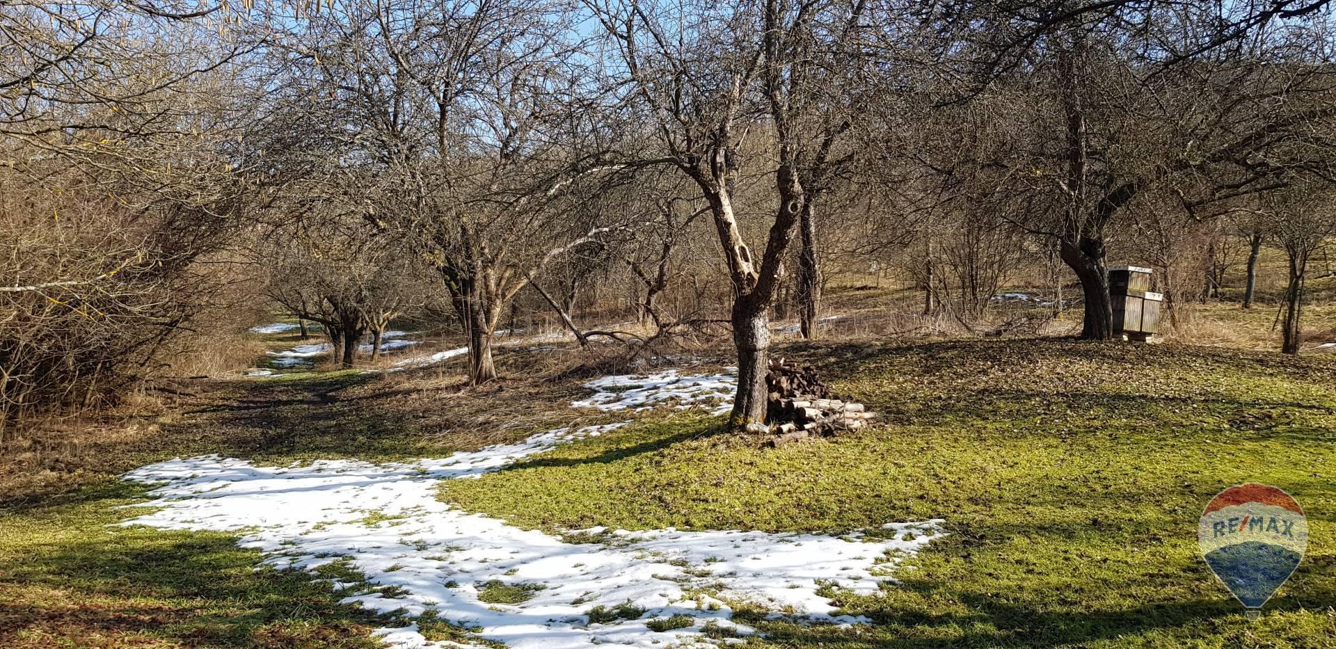 Predaj pozemku v obci Mostište