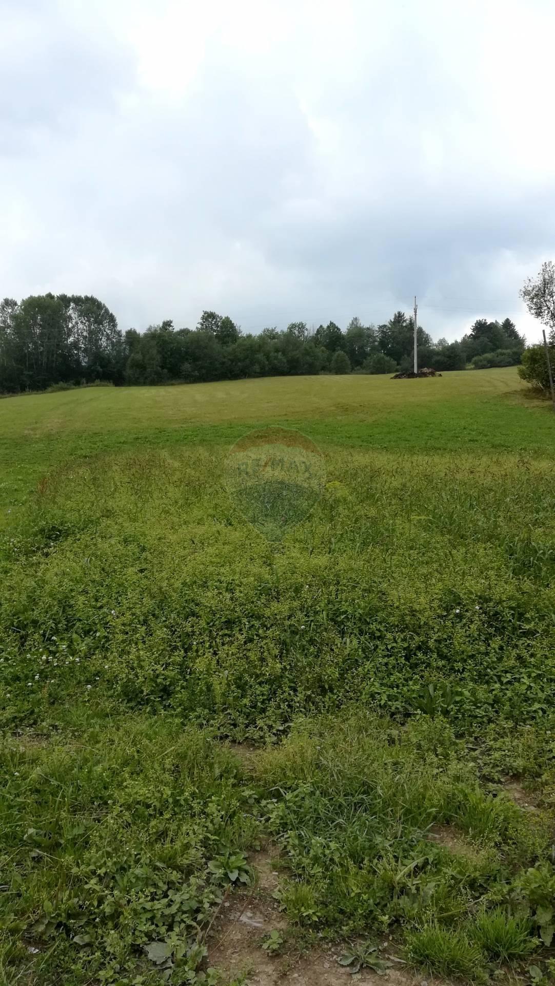 Predaj pozemku, Zázrivá - Dolina 5893