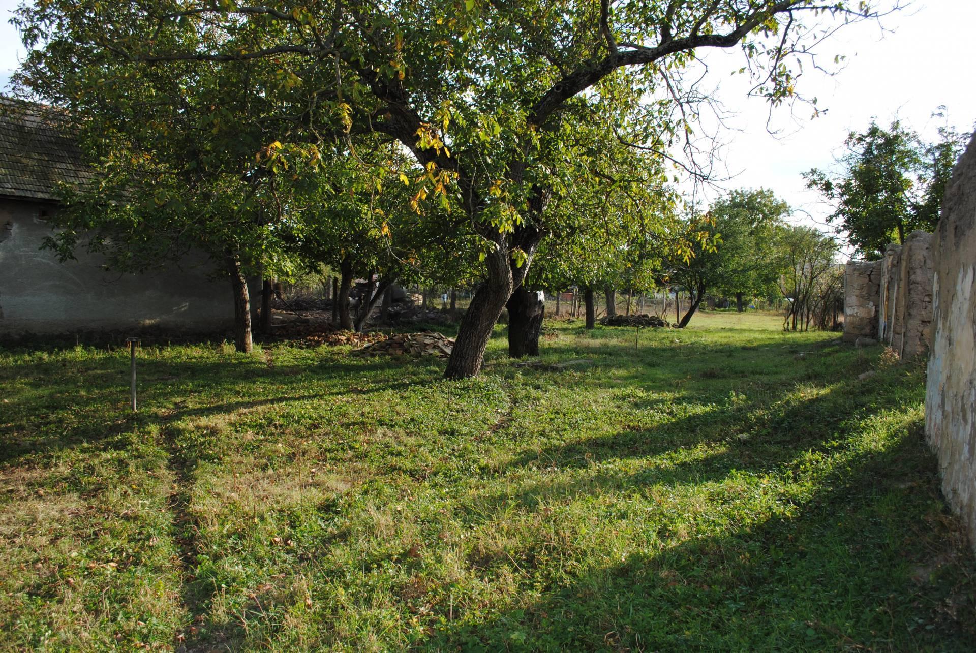 Predaj pozemok v obci Hronské Kosihy, okres Levice